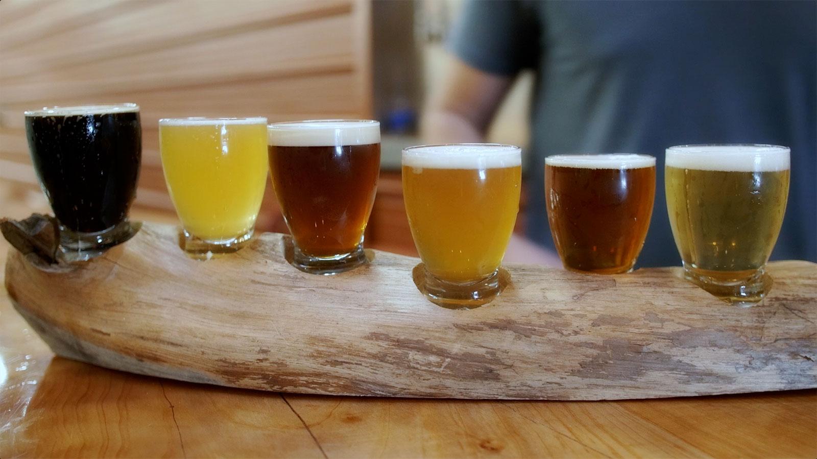 Burgeon beer co san diego craft beer is burgeoning in for How to craft beer